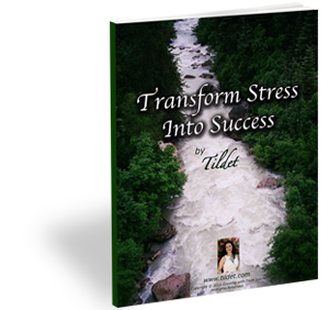 'Transform Stress Into Success' book cover